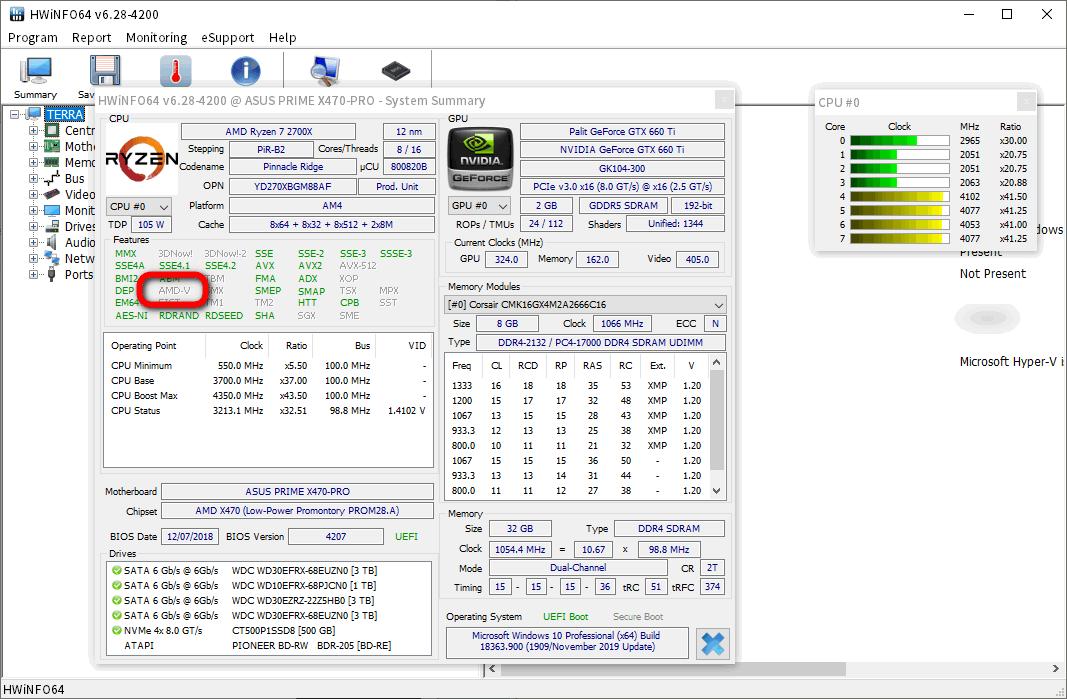 HWiNFO では AMD-V がグレーアウト